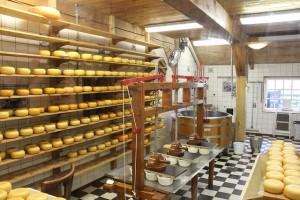 млекарница от фермата истинско сирене мляко